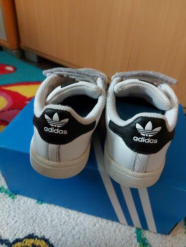 Adidas super s - Srbija: Superstar adidas broj 26