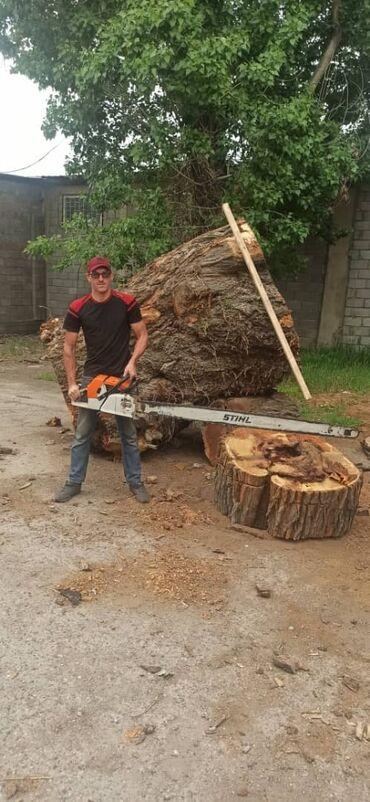 кровля крыши цена за квадратный метр работа in Кыргызстан | КРОВЛЯ КРЫШИ: Спилим самые сложные деревья без повреждений крыш проводов в самых тру