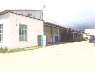 Продаю действующее фруктохранилище и в Ананьево