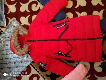 Продаю детский зимний куртку для девочек фабричный Пекин новый. цена