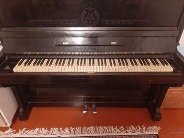 Спорт и хобби - Сиазань: Piano
