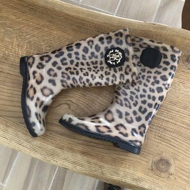 Сапожки Roberto Cavalli резиновые (оригинал) 36 размер в Чаек