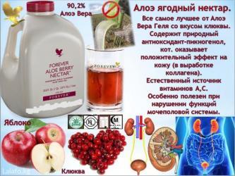 Алоэ Вера Гель! Чудотворных листьях алоэ содержится более 200 полезных в Бишкек