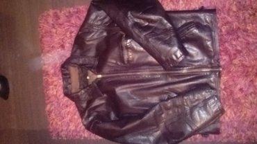 Kozna muška jakna engleska vel. 42 postava crvena svila   polovna bez  - Loznica