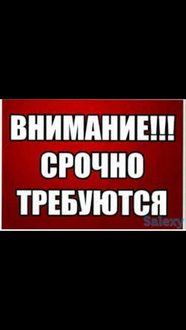 Срочно требуется парень ( девушка) с в Бишкек