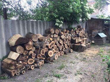 Бытовые услуги в Кыргызстан: Снос аварийных деревьев Распил Укорачивание ветокИ т.дУбираем