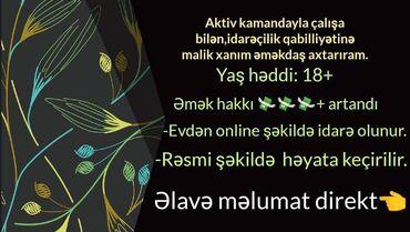 İş axtarıram (rezümelər) - Şəki: Şəbəkə marketinqi məsləhətçisi. 20