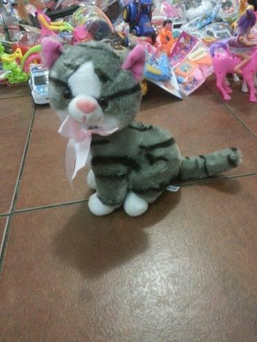 pişik yumşaq uşaq oyuncaqları - Azərbaycan: Oyuncaq pisik ses cixarir teze maldir
