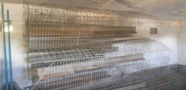 Клетка для кур несушек с птицефабрики. Состояние отличное. Комплект на