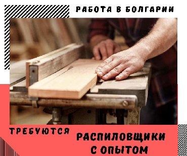 Bulgaria. Construction & Manufacturing. 6/1