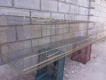 продам-крольчат в Кыргызстан: Продам клетки. Размер 60х200 4 ячейки, при необходимости ячецйки