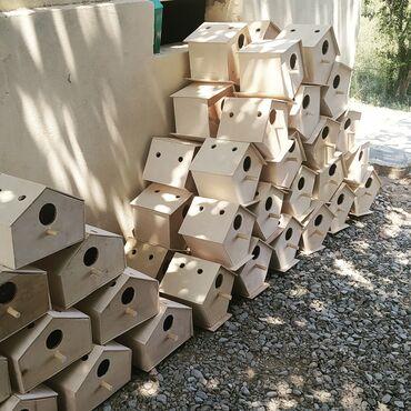 Heyvanlar - Azərbaycan: Dekor yuvalarin yiğilmasi hər ölçudə yiğilir.qiymətlər olçulərə görə