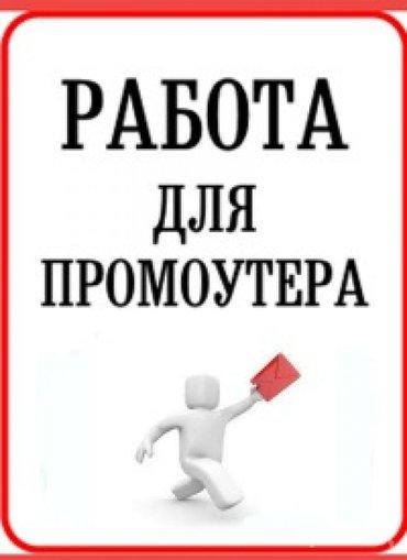 Набор промоутеров в частную производственную компанию по декоративной  в Лебединовка