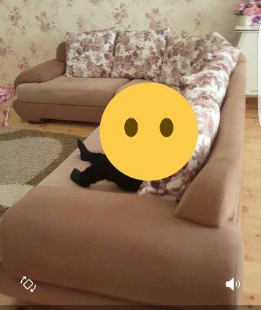 Bakı şəhərində Kunc divani, boyuk olcude satilir. Aydinoglu firmasinindir.