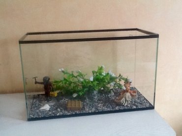 аквариум 25 литров с рыбками и все что есть для него в Бишкек