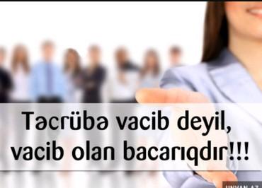 Bakı şəhərində TIC QROUP xarici wirket iwe qebul elan edir .