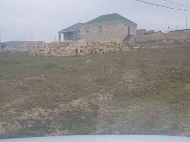 Bakı şəhərində Tecili olaraqSulutepe Cicek qesebesinde ferdi yawayiw ucun qiymeti