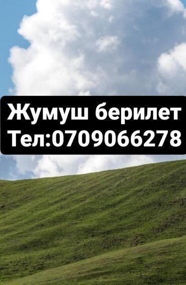 Поиск сотрудников (вакансии) - Бишкек: Сатучууга жардамчы керек оптовый отделге балдар кыздар 17-45 жашка