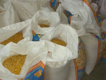 кукуруза в мешках с погрузкой в Кант