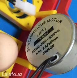Bakı şəhərində Material: yüksək keyfiyyətli plastik  Rəng: Sarı  Motor: 220V (2.5
