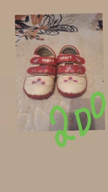 """Обувь """"дракоша"""" ходили внутри дома, в в Бишкек"""