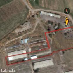 обмен авто на недвижимость in Кыргызстан | ПРОДАЖА УЧАСТКОВ: 1000 кв. м, С оборудованием, Действующий