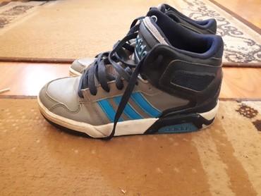 Dečije Cipele i Čizme | Srbobran: Adidas patika