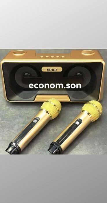 Студийные микрофоны - Кыргызстан: Беспроводная стерео система Караоке на два Микрофона - SDRD -