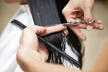 Potreban frizer sa iskustvom razradjenom salonu na Crvenom krstu