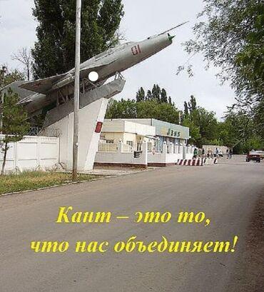 шкуры животных в Кыргызстан: Сниму 1 ком.кв. или 2-х ком.кв и 3х ком или кв в г. Кант, в военном го