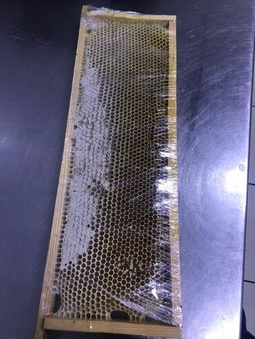 4578 объявлений: Чистый натуральный мед!!! С прополисомКг=750 сом. В одних сотах около