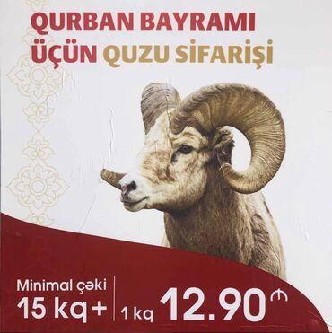 quzu - Azərbaycan: Qurbanlıq üçün qoç və quzu satılır.Diri Çəki 6 Azn.Beyleqan Qarabag