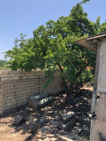 torpaq satışı - Sumqayıt: Satış 6 sot vasitəçidən