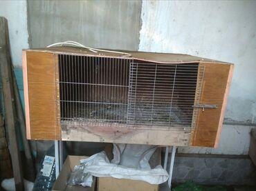 Животные - Ак-Джол: Продаю Клетку для кроликов, цыплят. Цена: 1300 сом Столик на колёсах