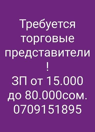 парни по вызову бишкек in Кыргызстан | ЭЛЕКТРИКИ: Торговый агент. Без транспорта. Без опыта. Полный рабочий день