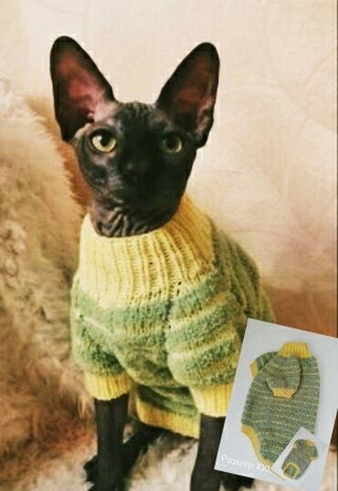 Плюшевые свитерочки для сфинксов.Мягкий,теплый,плюшевый свитер согреет
