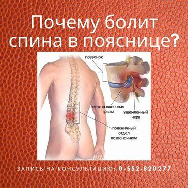 раковина для мойки головы в Кыргызстан: Позвоночник — это не монолит это подвижная структура, состоящая из бол