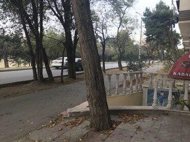 kafe icare - Azərbaycan: Neftciler Metrosu yaxin yol kenarinda Kafe icare verilir.Kafe manqal
