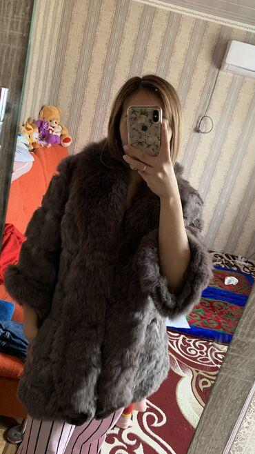 кролики бишкек in Кыргызстан   ДЕКОРАТИВНЫЕ КРОЛИКИ: Продаю шубу кролик в отличном состоянии было одето 2 раза