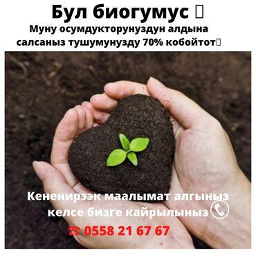 Животные - Военно-Антоновка: Биогумус - түшүмүңүздү 70% көтөрөт.⠀биогумус - баасы 20 сомдон 1 кг;