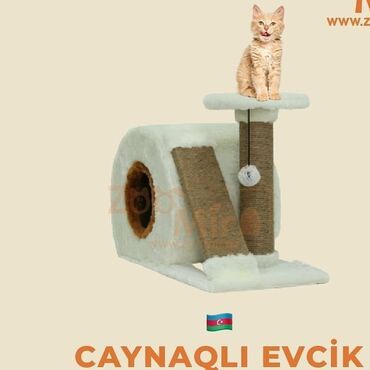 qarderob yuvası - Azərbaycan: Pişiklər üçün ev yuvasi