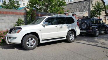 b u rybalka в Кыргызстан: Ищу работу семейного водителя на личном авто джип предсовительского кл
