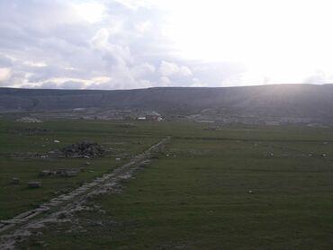 Daşınmaz əmlak - Azərbaycan: Torpaq sahələrinin satışı 8 sot Tikinti, Mülkiyyətçi