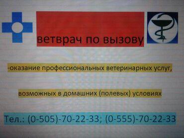 ветеринар бишкек in Кыргызстан | УСЛУГИ ВЕТЕРИНАРА: Ветеринар на выезд. Ветеринарные услуги и помощь вет. врача на дому. В