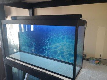 bmw-1-серия-114d-mt - Azərbaycan: Teze akvarium 1 metrelik