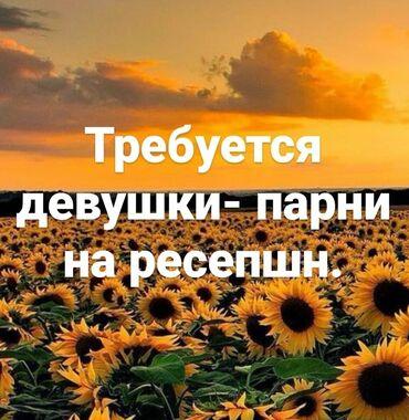 девушки по вызов бишкек в Кыргызстан: Требуется девушки/парни с приятной внешностью на ресепшн.График работы