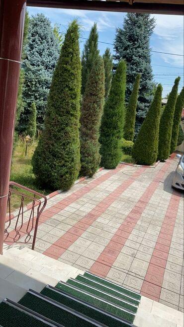 куплю продам дом в Кыргызстан: Продам Дом 168 кв. м, 6 комнат