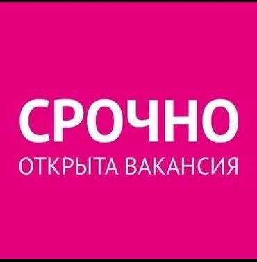 Работа торговый агент - Кыргызстан: Оформитель. До 1 года опыта. 5/2. Гоин