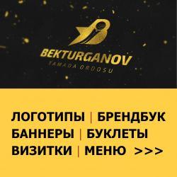 визы в Кыргызстан: Логотип Баннер Дизайн флаер Листовка Буклеты Лого банер Брендбук  Уваж