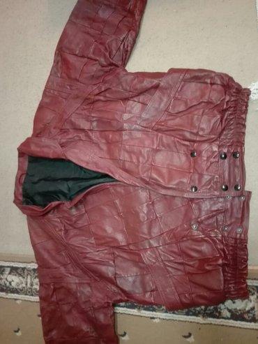 Duzina rukavispod - Srbija: Muska kozna jakna,duzina ramena70cm,duzina rukava 60cm,duzina jakne